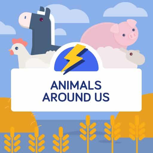 Animals Around Us flashcards